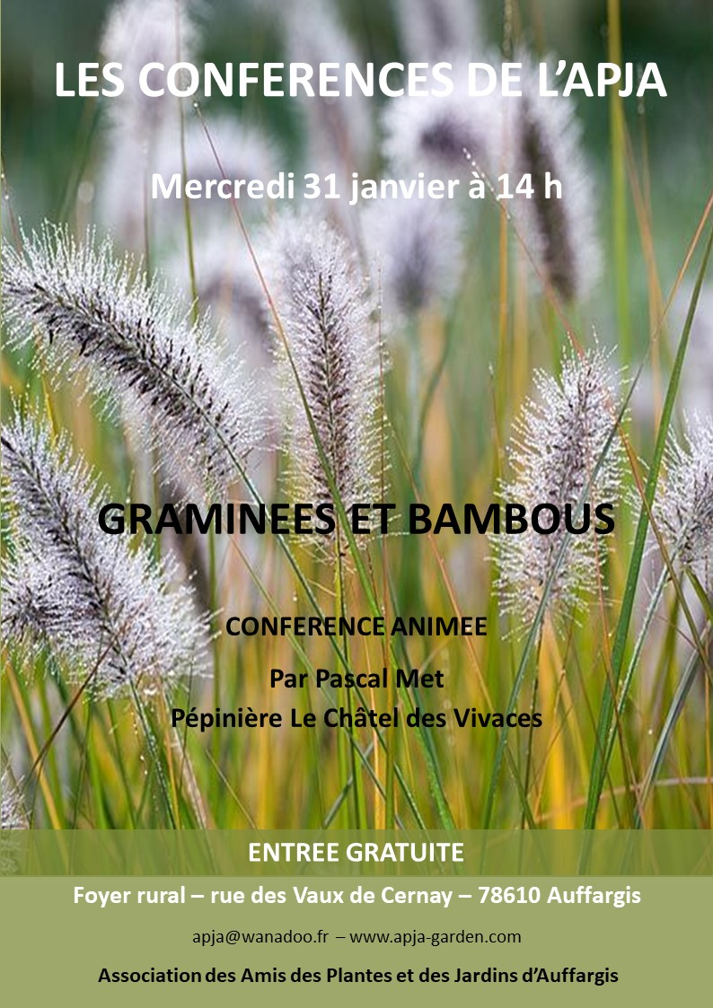 Affiche Conférence 31-01-2018