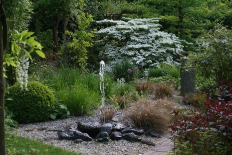 Sonja jardin.jpg