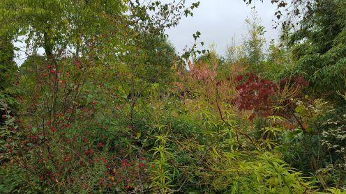 Jardin en marche Creuse2